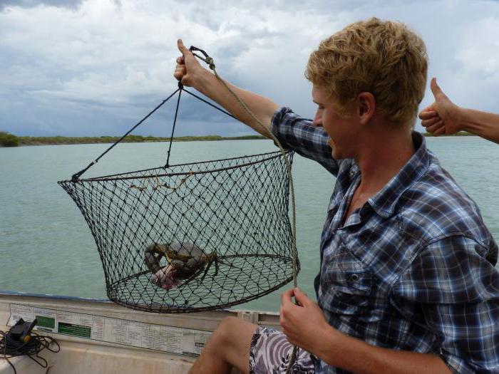 Как сделать раколовку своими руками видео инструкция — Рыбалка ...